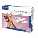 EFFIPRO DUO L pentru caini 20-40 kg - 4 pipete (2.68 ml)