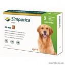 Simparica 80 mg (caini 20-40 kg) - 3 comprimate masticabile