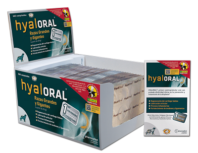 Hyaloral Large Breed - blister 12 cp
