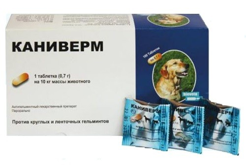 Caniverm 0.7 g - 1 tableta pt caini medii si mari