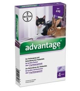 Advantage 80 - 4 pipete ( pentru pisici si iepuri intre 4-8 kg)
