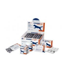 Condrovet Force HA pentru caini - folie cu 10 tablete