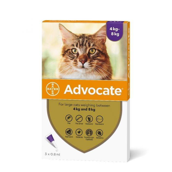 Advocate pisici 4-8 kg - 3 pipete antiparazitare