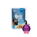 Brit Premium Cat Delicate File de Pui in sos - 85g