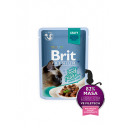 Brit Premium Cat Delicate File de Vita in sos - 85g