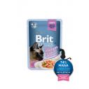 Brit Premium Cat Delicate File de Somon in sos  pentru pisici sterilizate - 85g