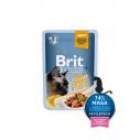 Brit Premium Cat Delicate File de Ton in sos - 85g