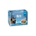 Brit Premium Cat Delicate File Multipack Family Plate  in sos - 12 x 85g