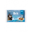 Brit Premium Cat Delicate File Multipack Dinner Plate in sos - 4 x 85g