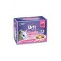 Brit Premium Cat Delicate File Multipack Family Plate in aspic - 12 x 85g