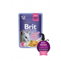 Brit Premium Cat  Delicate File de Pui in aspic - 85g