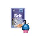 Brit Premium Cat Delicate File de Somon in aspic - 85g