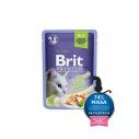 Brit Premium Cat Delicate File de Pastrav in aspic - 85g