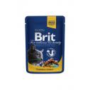 Brit Premium Cat cu pui si curcan - 100 g