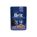 Brit Premium Cat cu cod - 100 g