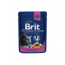 Brit Premium Cat cu somon si pastrav - 100 g