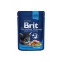 Brit Premium Cat Junior cu pui - 100 g