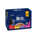 Brit Premium Cat Family Variety - 12 x 100 g