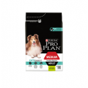 Purina Pro Plan Medium Adult Sensitive cu miel - 14 kg