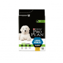Purina Pro Plan Large Robust Puppy cu pui - 12 kg