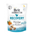 Brit Care Dog Functional Snack Recovery Herring - 150 g