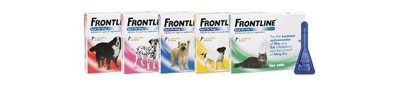Frontline Spot On pentru caini